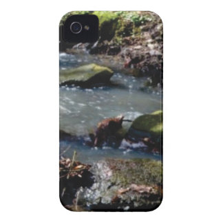 moss in the creek iPhone 4 case