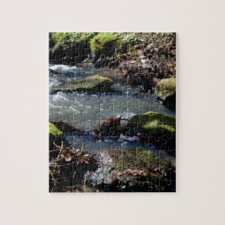 moss in the creek jigsaw puzzle