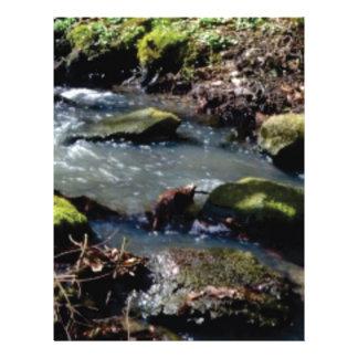 moss in the creek letterhead