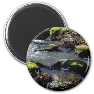 moss in the creek magnet
