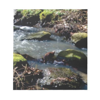 moss in the creek notepad