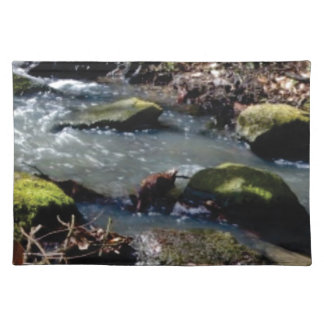 moss in the creek placemat