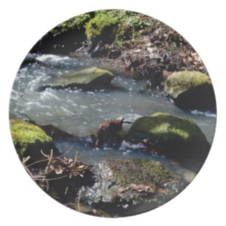moss in the creek plate