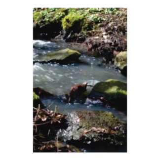 moss in the creek stationery