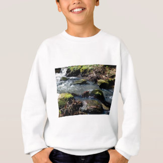 moss in the creek sweatshirt