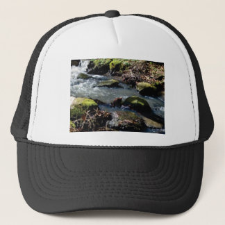 moss in the creek trucker hat