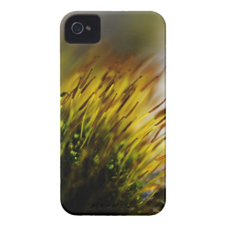 Moss iPhone 4 Cover