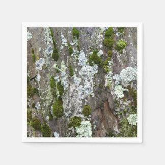 Moss & Lichen Disposable Napkins