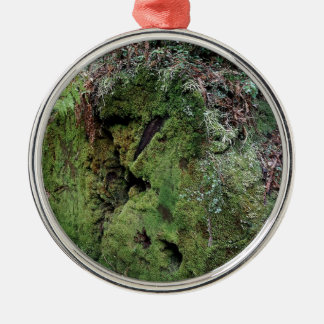 Moss on fallen redwood Silver-Colored round ornament