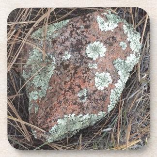 Moss rock lichen coaster