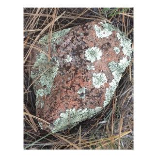Moss rock lichen letterhead