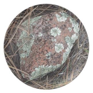 Moss rock lichen plates