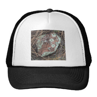 Moss rock lichen trucker hat