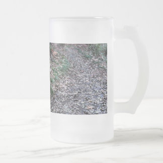 Mossy Bench Nature Trail in Olympic National Park Frosted Glass Beer Mug