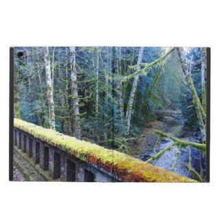 Mossy Bench Nature Trail in Olympic National Park iPad Air Cover