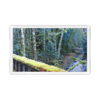 Mossy Bench Nature Trail in Olympic National Park Serving Tray
