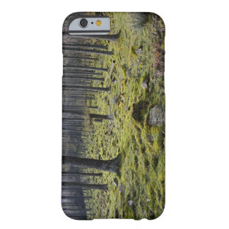 Mossy Forest Phone Case