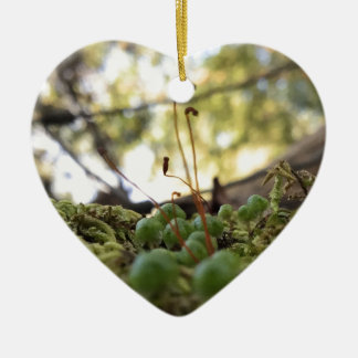 Mossy Grace Ceramic Heart Ornament