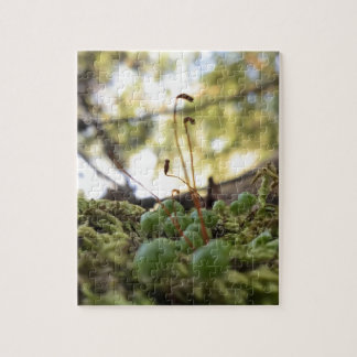 Mossy Grace Jigsaw Puzzle