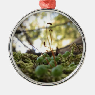 Mossy Grace Silver-Colored Round Ornament