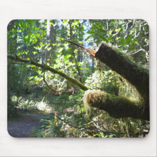 Mossy Green Branch in the Forest Mouse Pad