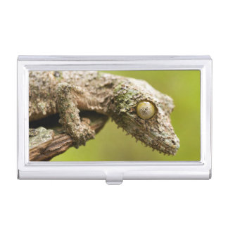 Mossy leaf-tailed gecko on a piece of bark case for business cards
