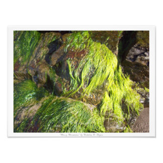 """""""Mossy Mountains"""" Photographic Print"""