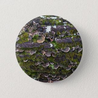 mossy mushroom fun 2 inch round button