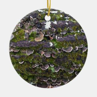mossy mushroom fun ceramic ornament