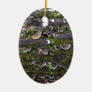 mossy mushroom fun ceramic oval ornament