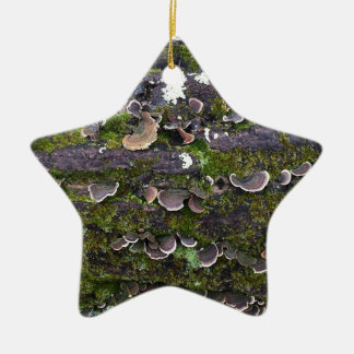 mossy mushroom fun ceramic star ornament