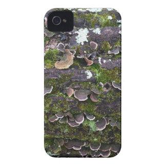 mossy mushroom fun iPhone 4 Case-Mate case