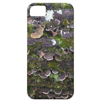 mossy mushroom fun iPhone 5 case