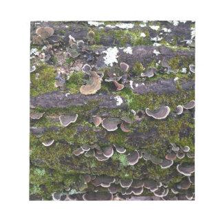 mossy mushroom fun notepad