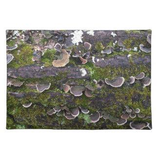 mossy mushroom fun placemat