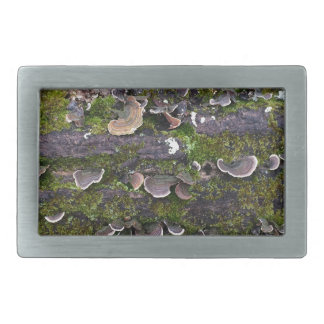 mossy mushroom fun rectangular belt buckles