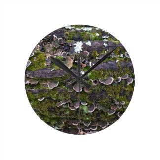 mossy mushroom fun round clock