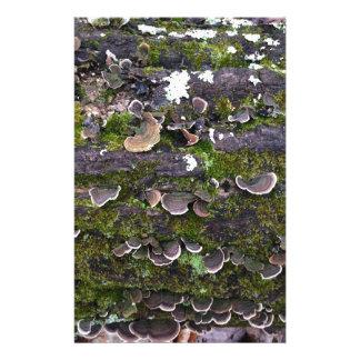 mossy mushroom fun stationery