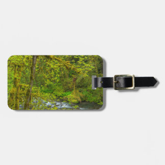 Mossy Rocks And Trees Line Eagle Creek Tags For Bags