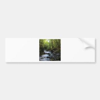 mossy stream in the forest bumper sticker