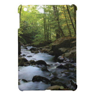 mossy stream in the forest iPad mini case
