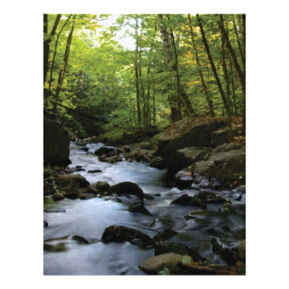 mossy stream in the forest letterhead