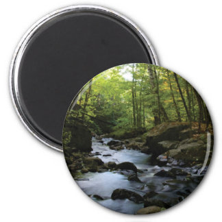 mossy stream in the forest magnet
