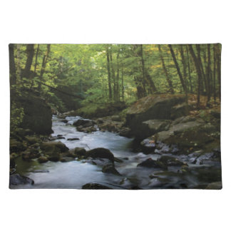 mossy stream in the forest placemat