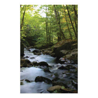 mossy stream in the forest stationery