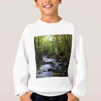 mossy stream in the forest sweatshirt