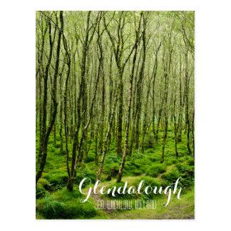 Mossy Trees in Glendalough Postcard