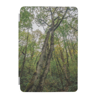 Mossy Trees in Pacific Northwest iPad Mini Cover