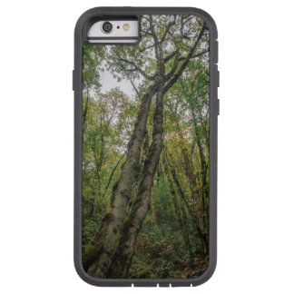Mossy Trees in Pacific Northwest Tough Xtreme iPhone 6 Case