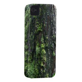 Mossy Trunk iPhone 4 Cover